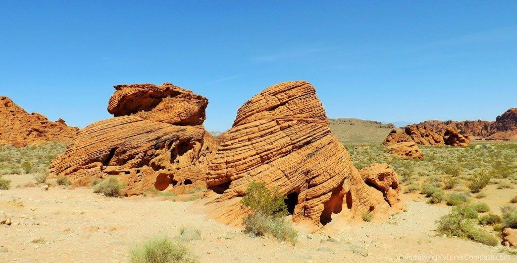 Valley of Fire Beehives