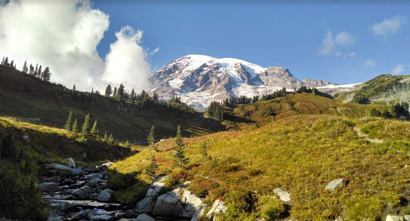 Mount Rainier National Park // Copyright Anne Trent // Used with permission.
